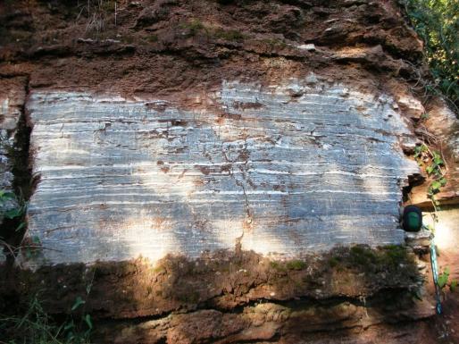 Detall de la Guixera de Roques Blanques